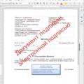 Визуализация электронной подписи на исходящих документах в соответствии с ГОСТ Р 7.0.97-2016. Финальная версия