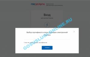 Электронная отчетность Астрал Отчет Ижевск: Сайт госуслуг не видит ЭЦП. Что делать?