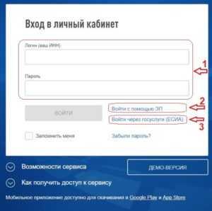 Как ИП сдать декларацию по УСН в электронном виде, можно ли отчитаться через личный кабинет налогоплательщика на сайте ФНС