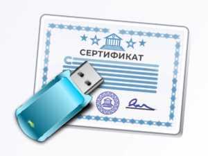 Как установить сертификат ЭЦП на компьютер: инструкция