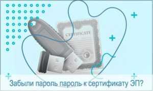 Как узнать серийный номер сертификата эцп - WikiJurSovetnik.Ru
