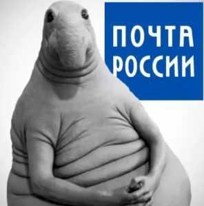 Электронная подпись для Почты России: как получить, пользоваться