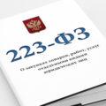 Закупки по223-ФЗ для чайников: кто работает, принципы и отличия