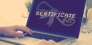 Где хранятся сертификаты ЭЦП на компьютере: хранение